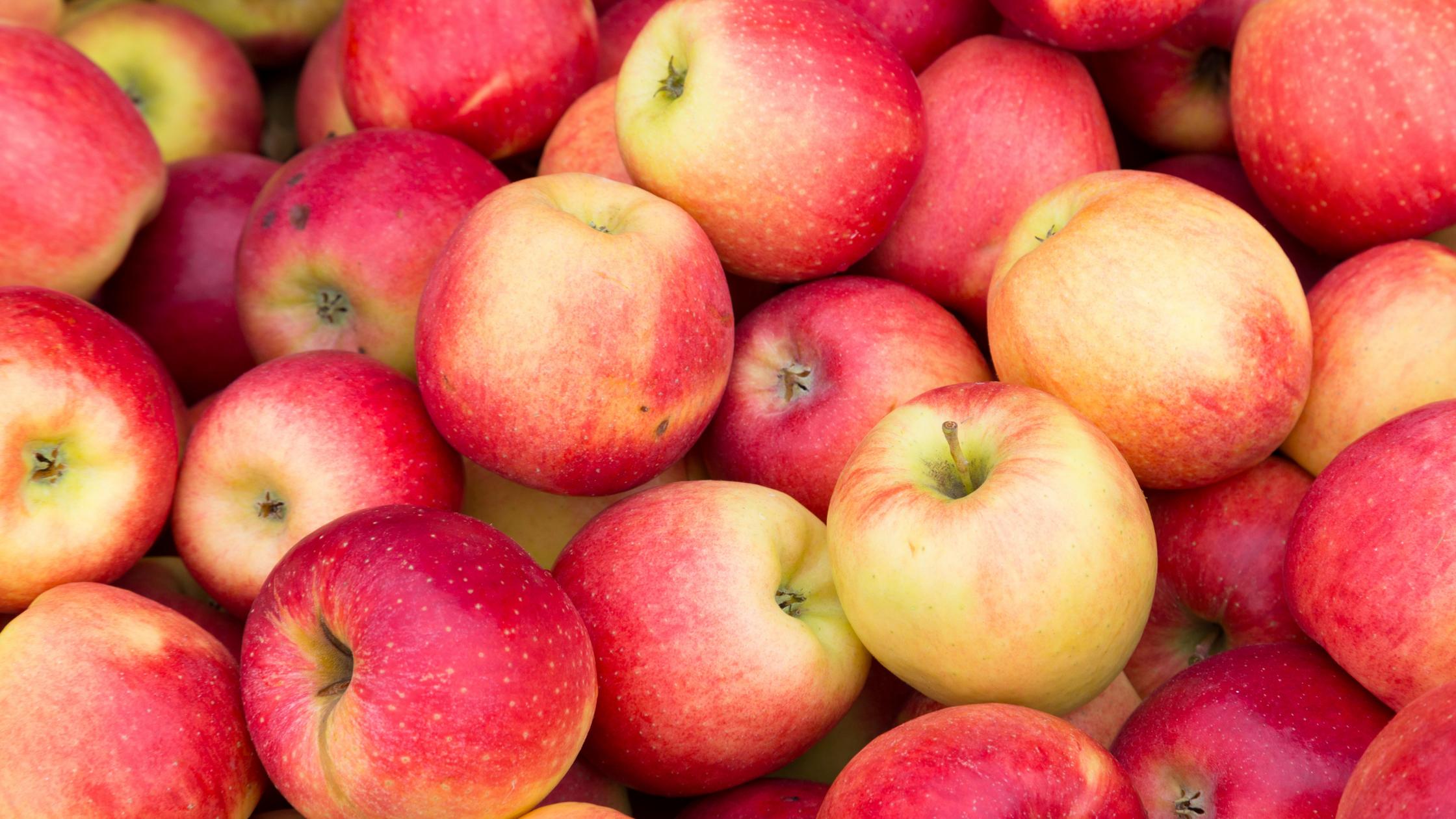 Apples bolg post